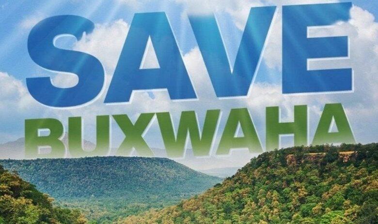 Buxwaha Forest